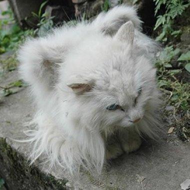 gato con alasjpg